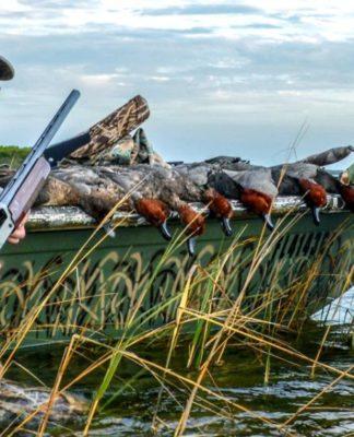 Легкая добыча или правила охоты на утку